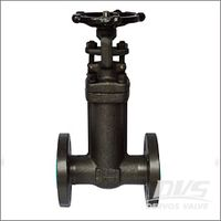 Forged Bellow Seal Gate Valve, A105N, CL150-600 1/2-4 Inch thumbnail image