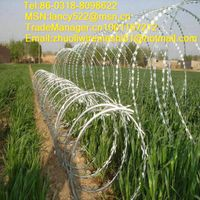 stainless steel razor barbed wire supply in Anping factory thumbnail image