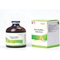 AMOXICILLIN TRIHYDRATE POWDER thumbnail image