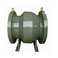 Zigong Axial Flow Check Valve