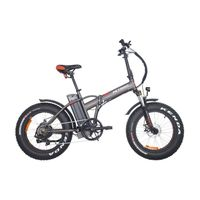 PETRIGO Folding Electric Bike Women City Bike for Commutes Fat Tyre Bicycle TDN01Z