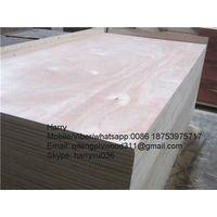 fancy plywood veneer plywood