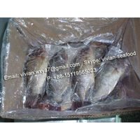 Frozen Black Tilapia Gutted Gilled Scaled thumbnail image