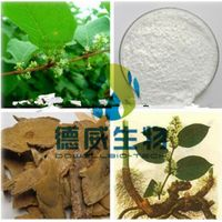 Liver protection Medicinal plant Polydatin & Resveratrolcontent