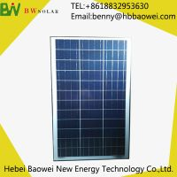 BAOWEI-80-36P Polycrystalline Solar Module