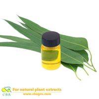 Pure Nature Essential Oil Lemon Eucalyptus Oil