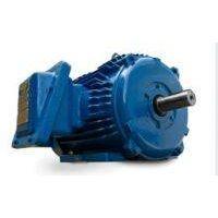 Elektrim Motor Electric Motor