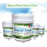 Natural Power Paint
