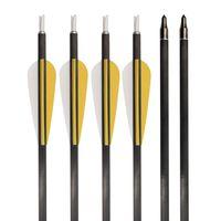 Archery Carbon Arrows Recurve Compound Bow Target Shooting ID 6.2 SP 600 thumbnail image