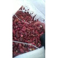 "Smart Agro Invest LLC : Kidney Beans ""Little Red Riding Hood""from Ukraine."