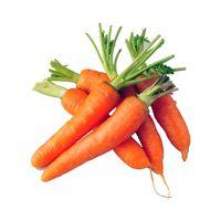 Good quality fresh carrots with custom planting