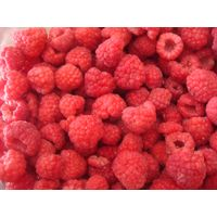 frozen raspberry, iqf raspberry, whole or crumble, best quality and price, fresh tasty