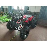200cc shaft type
