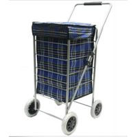 Big shopping trolley