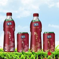 Wild jujube drinks in bottle thumbnail image