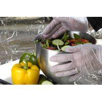 Food Process Disposble Vinyl Gloves