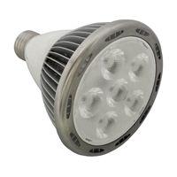 10W LED Bulb,LED Par 30,LED Par38