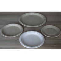 China Good Quality Paper Plate Equipment thumbnail image