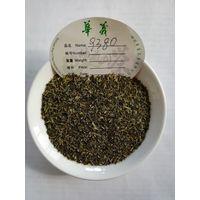 chunmee green tea, gunpowder tea, 9369,9371,9380,4011 thumbnail image