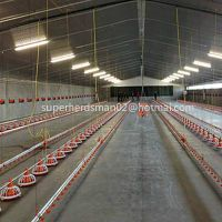 full set poultry farm equipment for broiler production