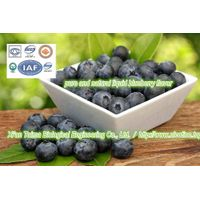Fruit Flavour Concentrate // Concentrated Blueberry Fruit Flavour (Food Grade)(HOT SELLING) thumbnail image