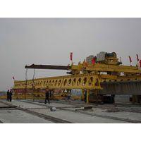 HZQ30/100 highway bridge construction crane