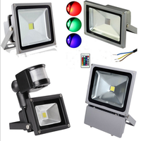 10W 20W 30W 50W 80W 100W 200W led flood light
