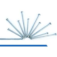 Electro Galvanized Concrete Iron Nails