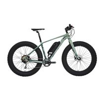 "26""4.0 Fat Electric Snow Bike"