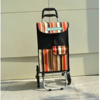 Climbing stairs shopping trolley bag