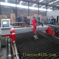 mini gantry cnc metal cutting machine