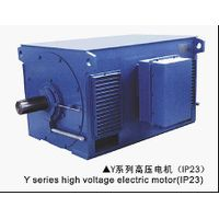 Y Series HV Squirrel Cage Motor
