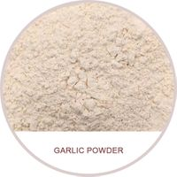 garlic powder dehydrated garlic powder 80-100-120 mesh garlic powder