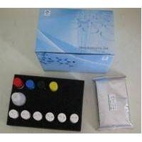 Mouse Double-stranded DNA antibodies(DS-DNA) ELISA Kit