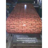 steel coil- galvanized, pre-painted,GI,GL,PPGI,PPGL,WOOD,MATT,PPCR steel coils steel coil- galvanize