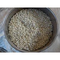 Caprolactam grade ammonium sulfate granular