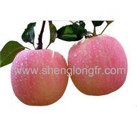Fresh Red Fuji Apple thumbnail image
