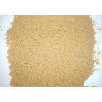 Wholesale alkaline protease/food additive/food grade