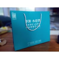 Premium OEM/ODM promotional shopping gift bag