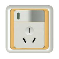 British Wall Switch with Socket  (ES5062) thumbnail image