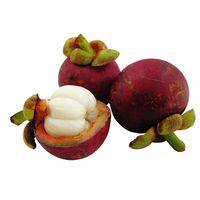 100% Natural mangosteen extract Mangostin 5%-95% thumbnail image