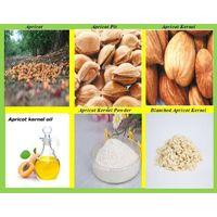 Sweet Apricot kernels Powder,Debittered Apricot Kernels Powder