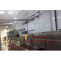 poultry equipment/circulating steam-blowing type immersion&scalding machine