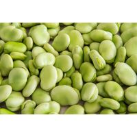 dry lima beans high quality for sale in low price