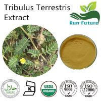 Tribulus Terrestris Extract ,China factory supplier tribulus terrestris powder ,pure natural tribulu