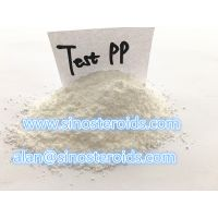 Muscle Growth Steroids Raw Powder Testosterone Phenylpropionate / Test PP