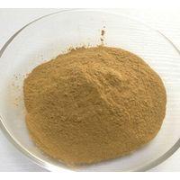 California Worm Flour Eisenia Andrei Worm Protein Powder thumbnail image