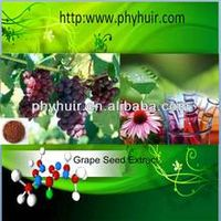 Grape Seed Extract  Proanthocyanidin 90%