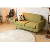 Simple Modern Style Fabric Loveseat Sofa