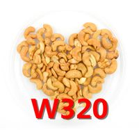 High Quality Cashew Nut Kernel 320/450
